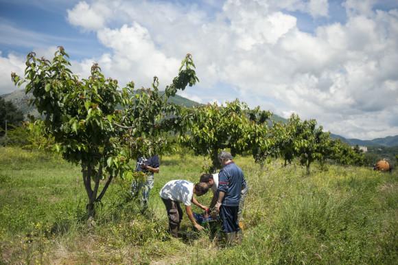 Agriturismo La Sonnina
