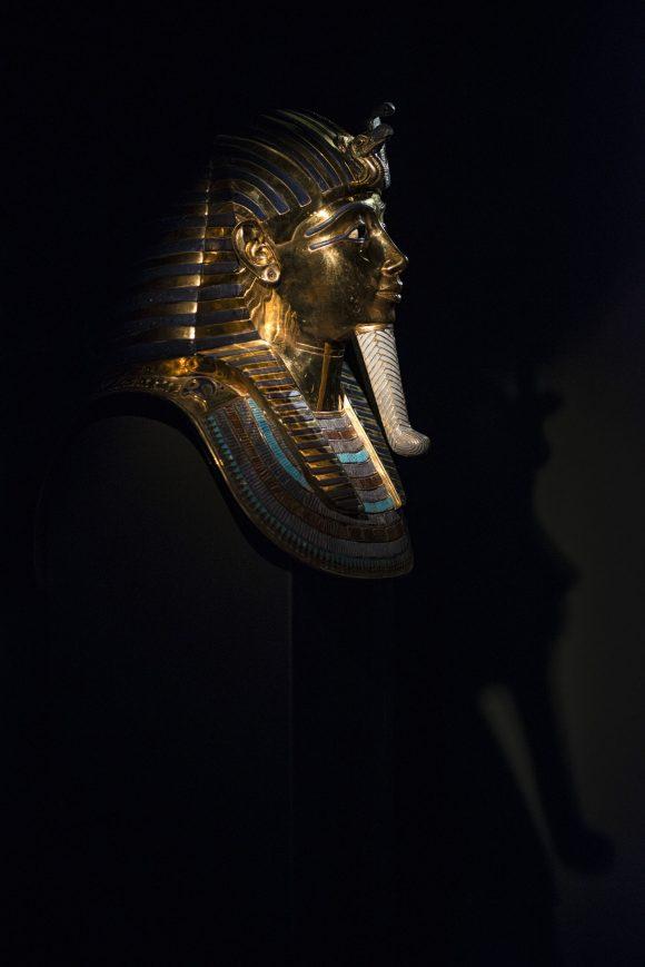 ACCADEMIA D'EGITTO #10