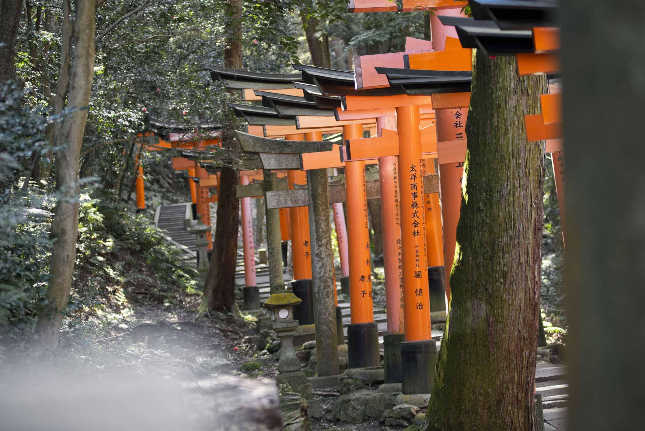 VIAGGIO IN GIAPPONE – FUSHIMI INARI SHRINE #1