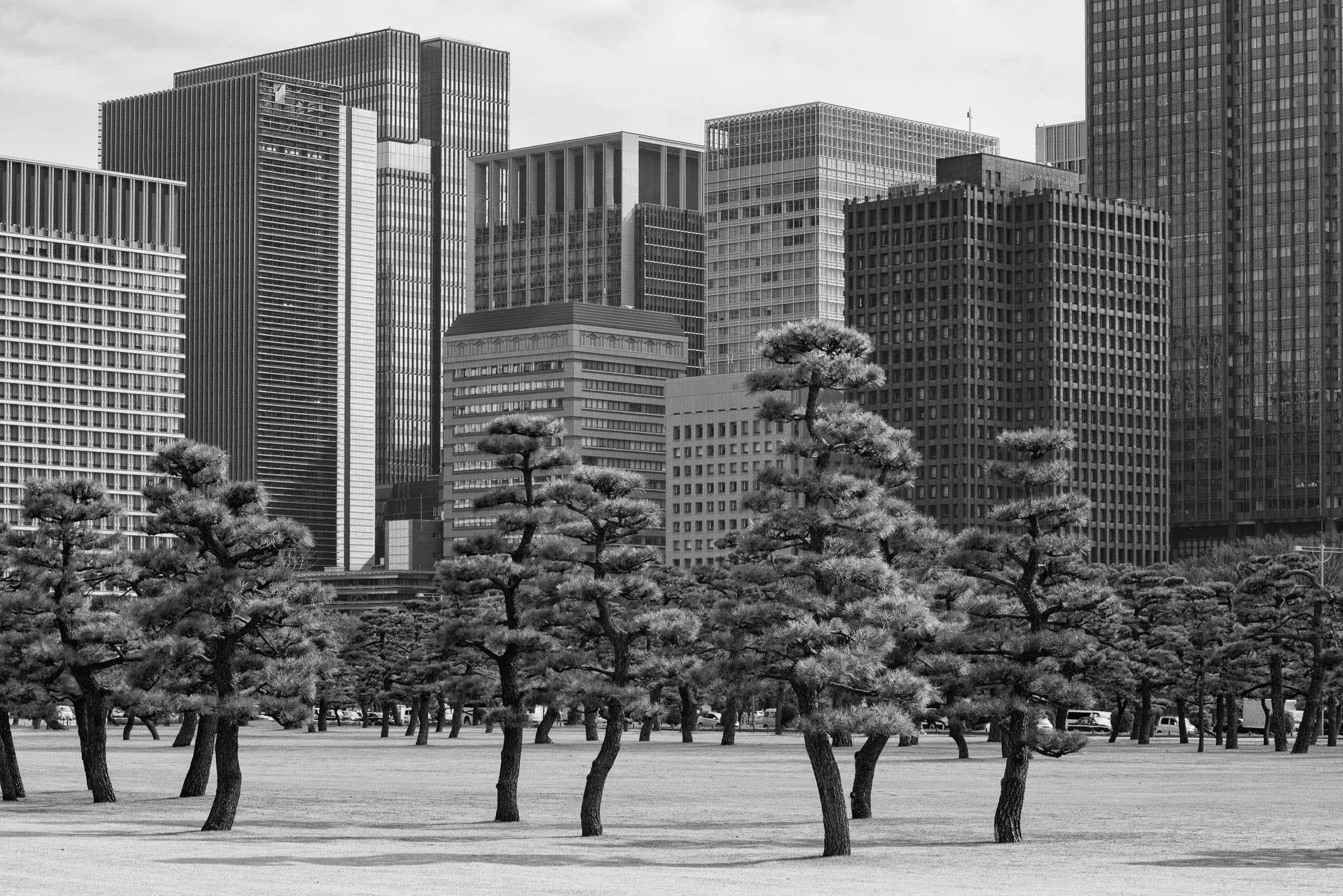 VIAGGIO IN GIAPPONE – TOKYO GINZA #2