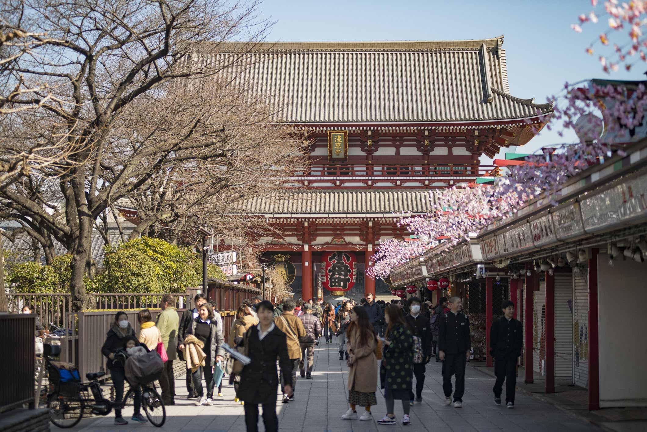 VIAGGIO IN GIAPPONE – TOKYO SENSO-JI #5