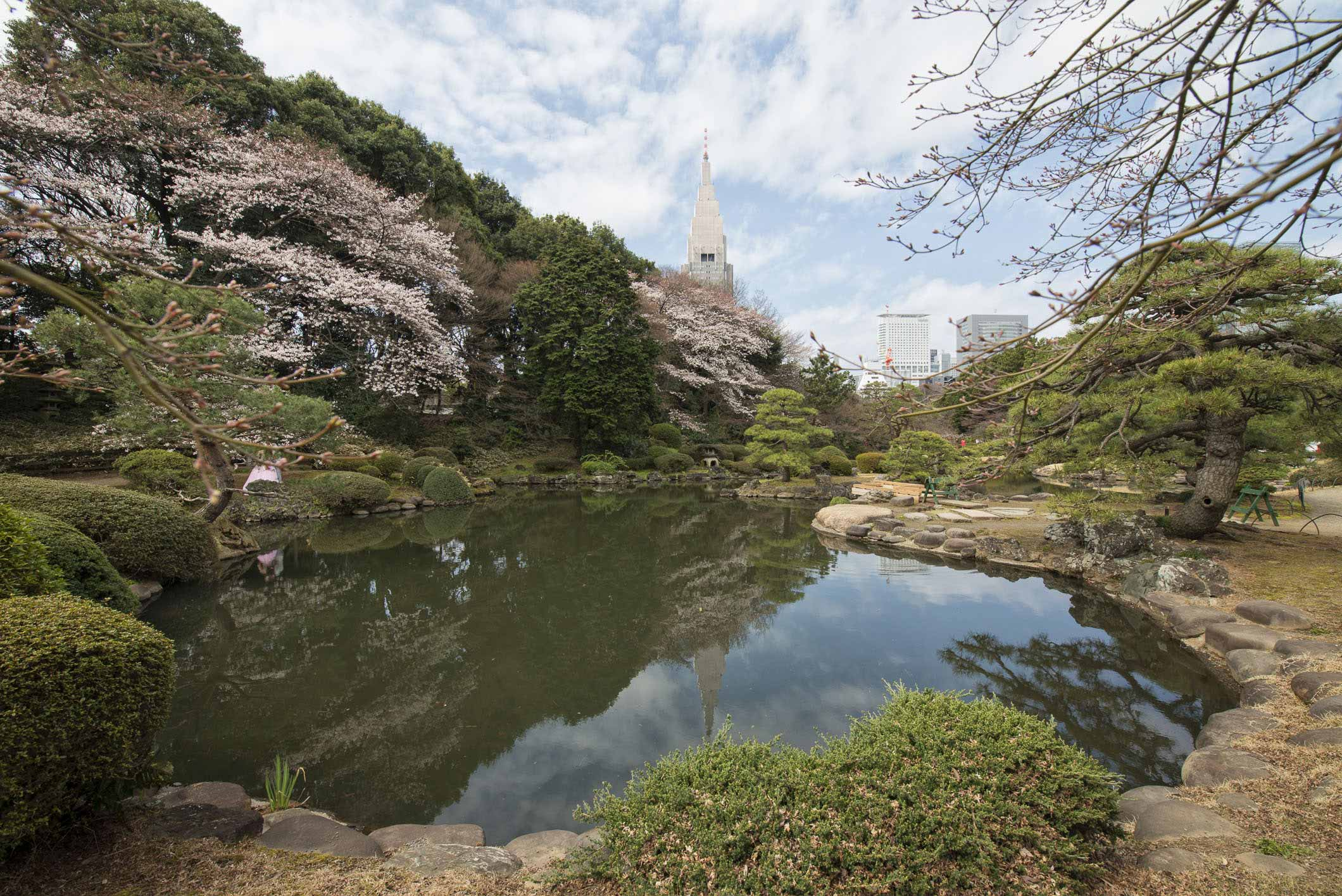 VIAGGIO IN GIAPPONE – TOKYO SHINJUKU GYOEN #1